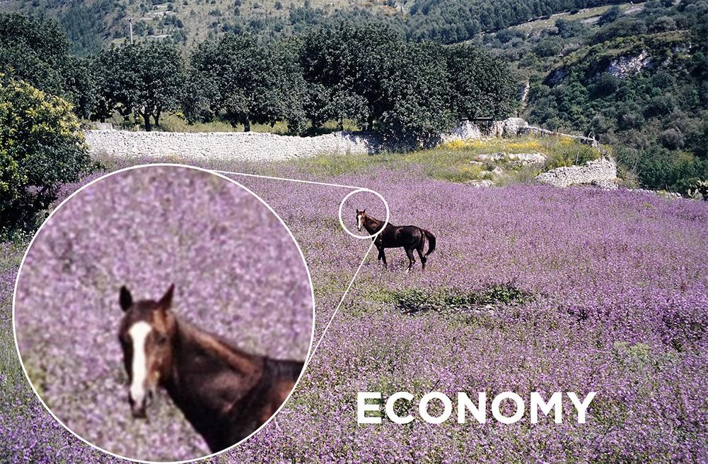 Eco Bild